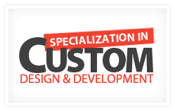 custom web design experts
